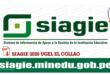 ORIENTACIONES PARA USUARIOS SIAGIE-2020-UGEL EL COLLAO